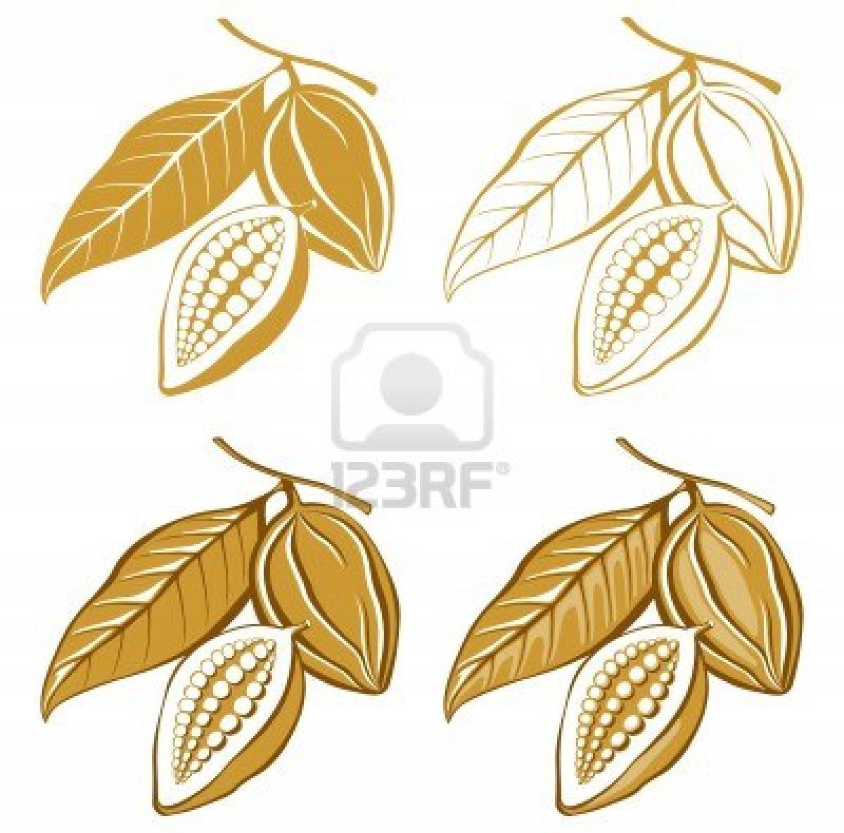 1200x1185 Cocao Bean Drawings Clip Art Food 2 Beans, Cacao