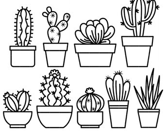 Cactus Drawing Black And White At Getdrawings Com Free For