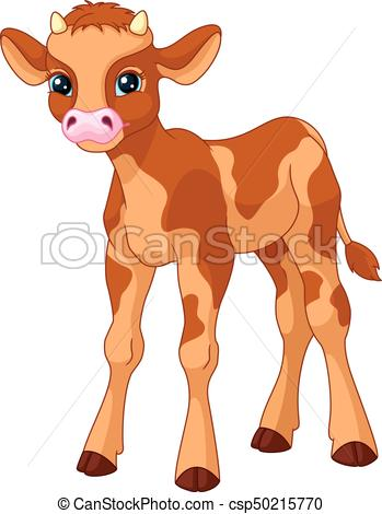 349x470 Calf. Young Calf On White Background.