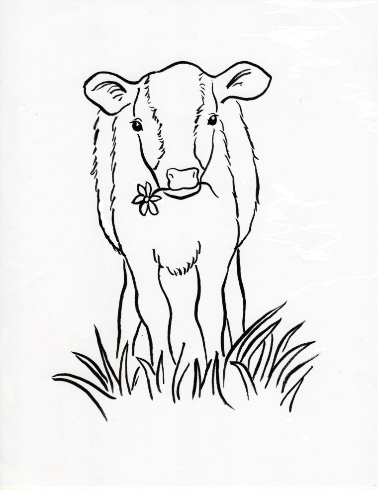 760x985 Calf Coloring Page
