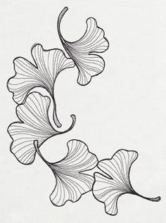 236x317 How To Draw A Calla Lily Step By Step. Drawing Tutorials For Kids
