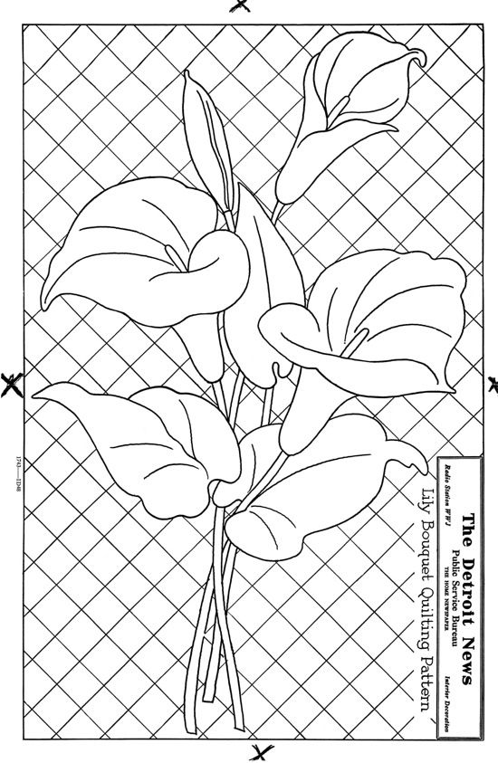 550x843 67 Best Calla Patterns Images On Calla Lilies, Drawing
