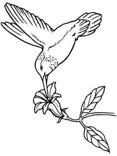 236x314 Calla Lilies Drawing Flowerart On Water Ltbgtlilieslt