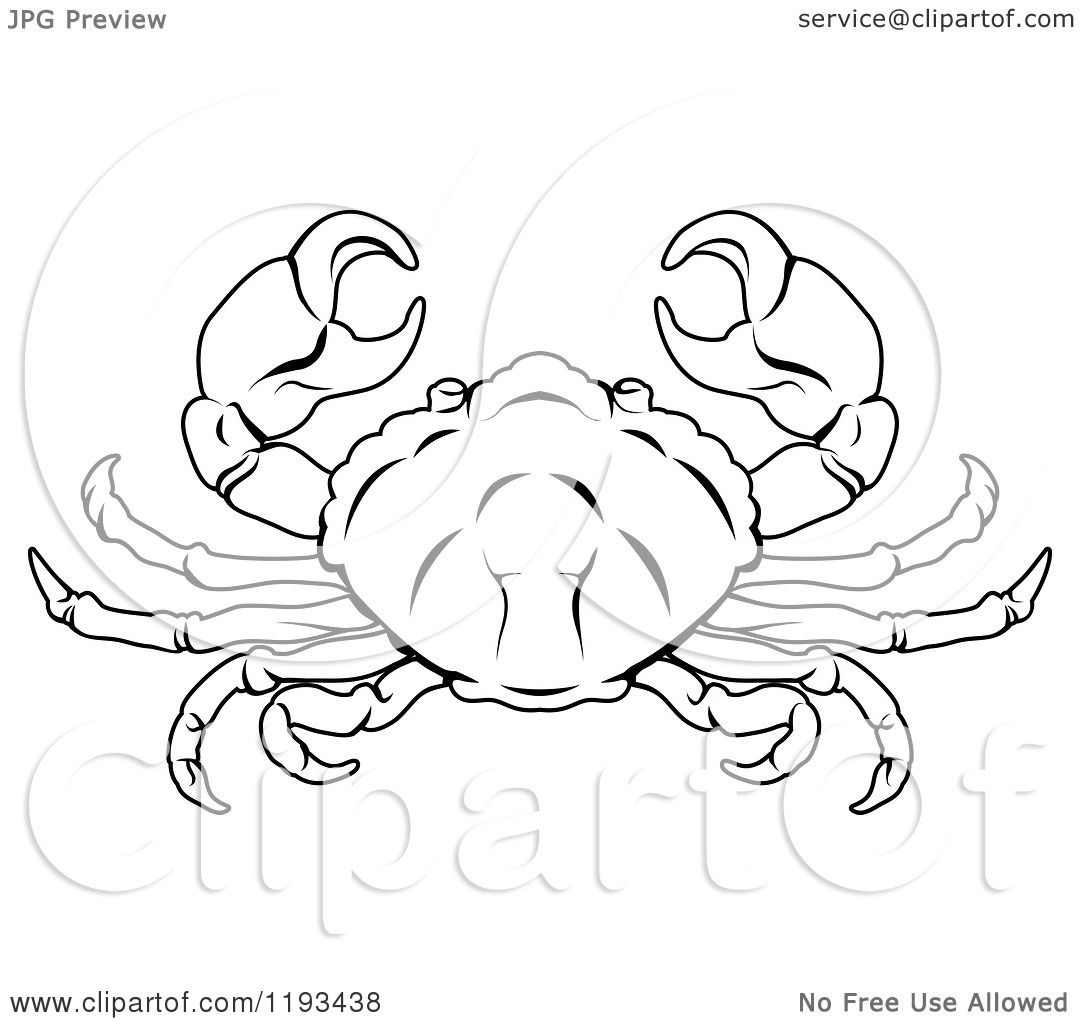 1080x1024 Clipart Of A Black And White Line Drawing Of The Cancer Crab