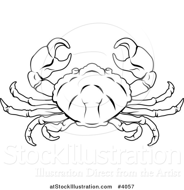 600x620 Vector Illustration A Black And White Line Drawing