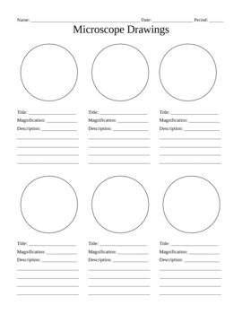 270x350 Use This Blank Handout As A Way For Students To Record Microscope