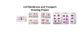 269x160 Cell Membrane And Transport Drawing Project By Ramez Wakileh On Prezi