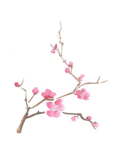 400x500 Collection Of Cherry Blossom Drawing Tumblr High Quality
