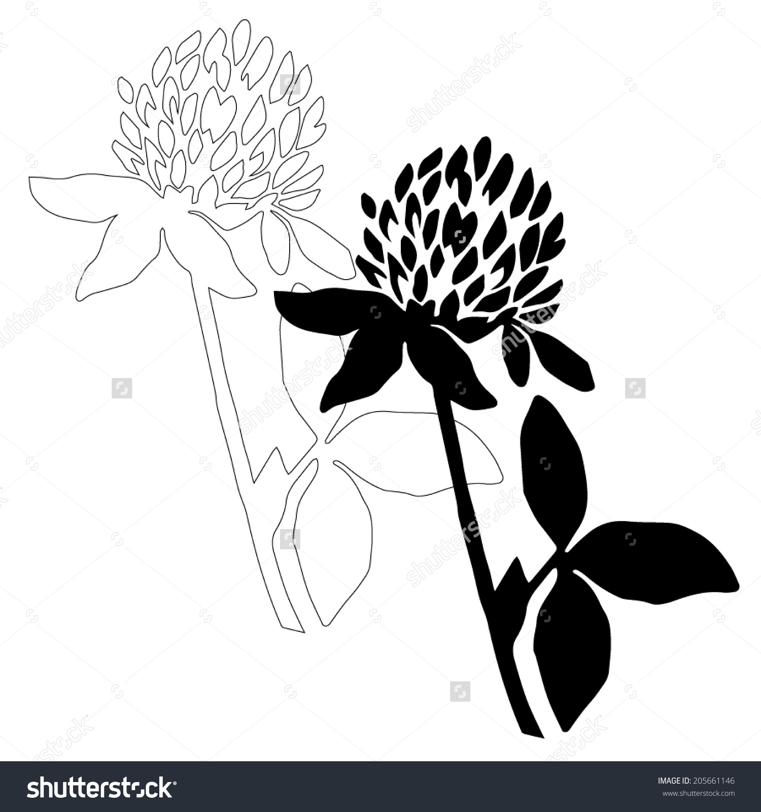 1500x1600 Black And White Flower Drawings. Beautiful Flowers Pic For Drawing