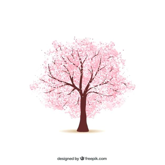 626x626 Cherry Blossom Tree Drawing In Addition To Cherry Tree Cherry