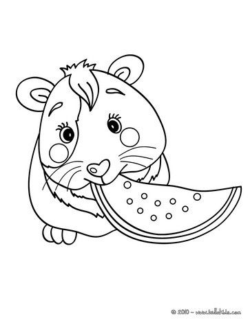 363x470 Color This Picture Of Eating Guinea Pig Coloring Page
