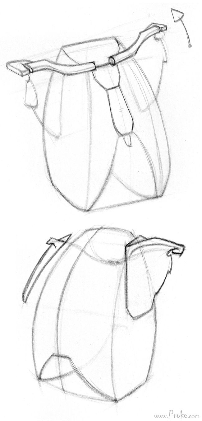 Clavicle Drawing