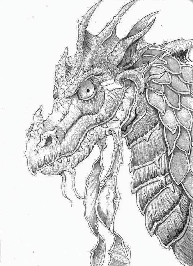 671x924 Beautiful Dragon Sketch For Colouring