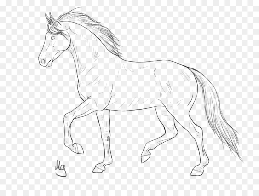 The Best Free Colt Drawing Images Download From 127 Free Drawings