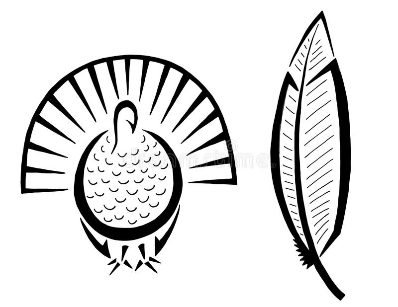 800x618 Drawing Of A Turkey Feather