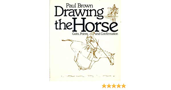 600x315 Drawing The Horse Gaits, Points, And Confirmation Paul Brown