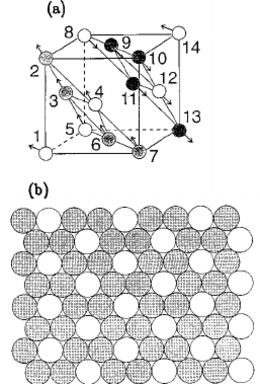 850x1254 Connection Between The Bcc Conventional Cell Thin Lines