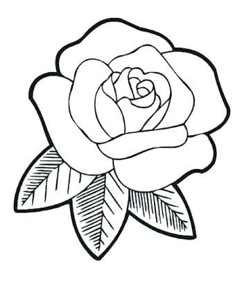 352x417 Rose Outline Rose Outline O Flower Outline Rose Tattoo Outline