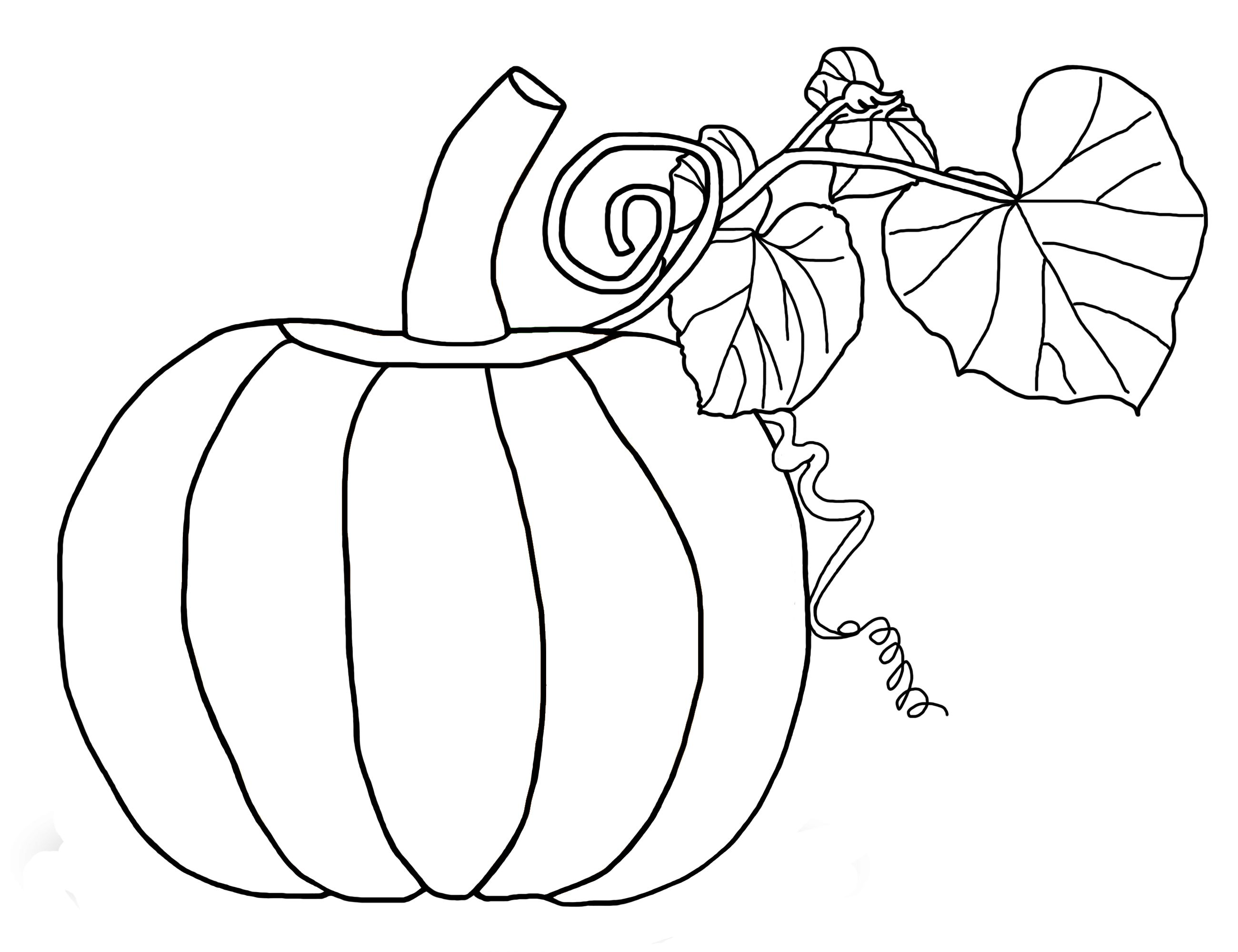 2600x2000 Big Pumpkin And Leaves Coloring Pages Free Printable For Kids