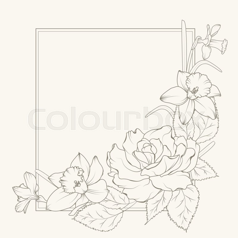 800x800 Rose And Narcissus Flowers Corner Frame Design Element Stock
