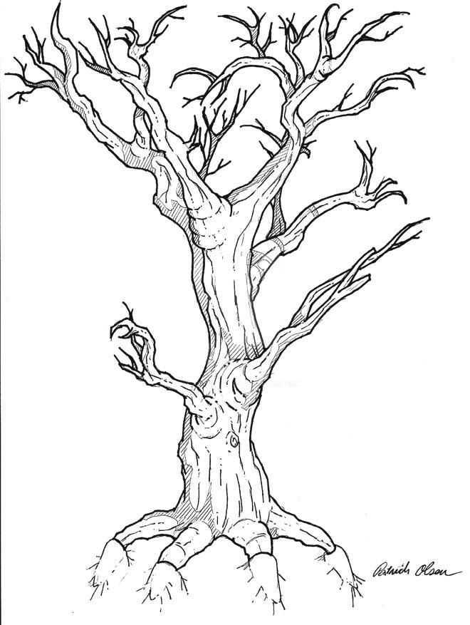 Creepy Dead Tree Drawing