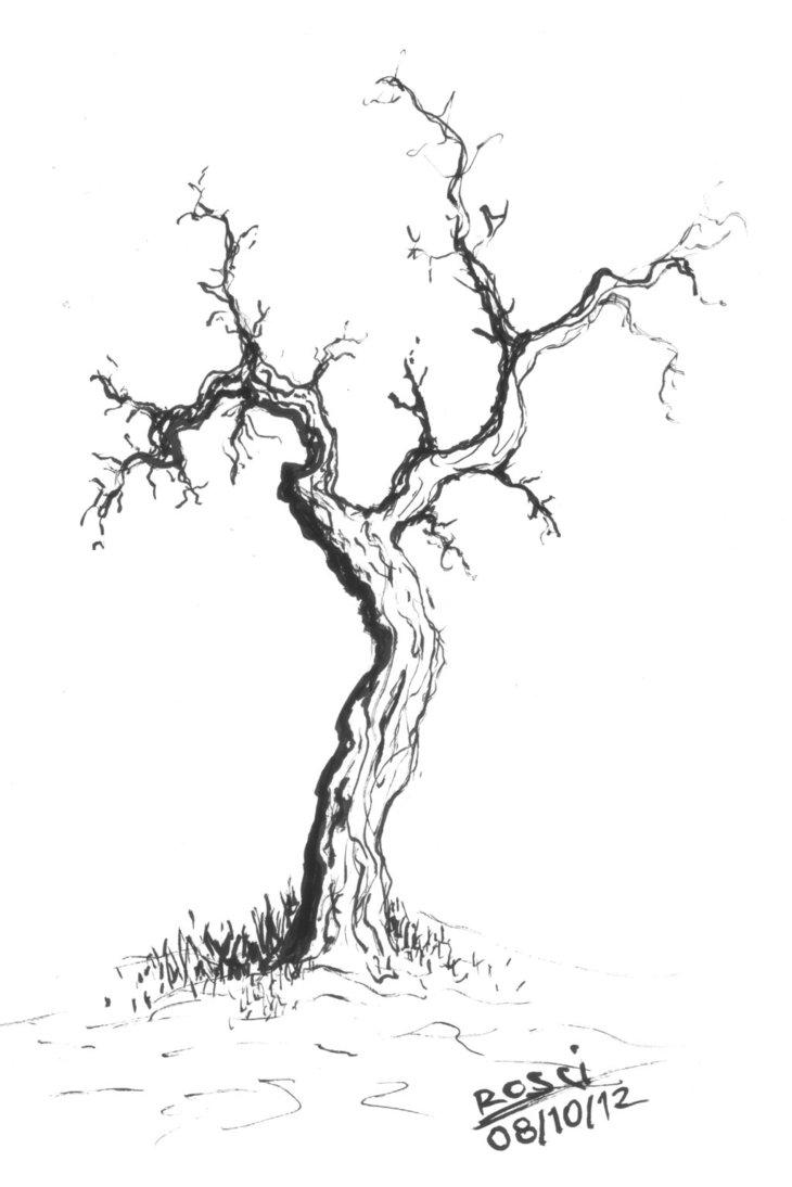 730x1094 Dead Tree By Rosci