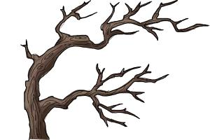 300x200 How To Draw A Scary Tree