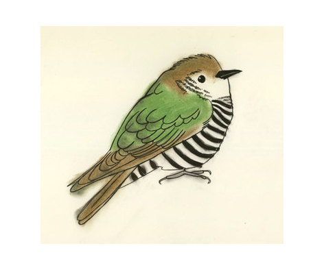 472x394 Cuckoo Bird Art Print Clyde The Cuckoo 4 X 6