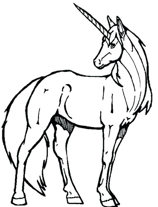 600x788 Cute Unicorn Coloring Pages Plus Unicorn Line Drawing 2 Cute Baby