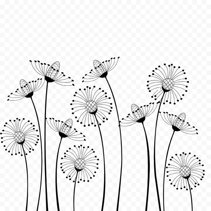 Dandelion Blowing In The Wind Drawing