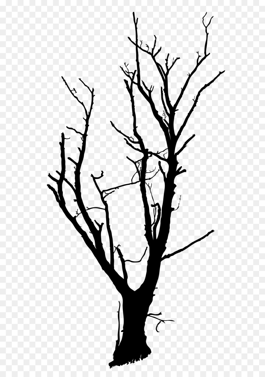 900x1280 Tree Drawing Branch Clip Art