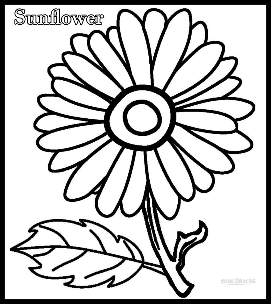 debate drawing at getdrawingscom  free for personal use debate  x stunning sunflower outline drawing english debate essay picture
