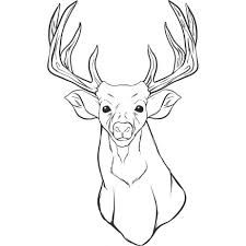 225x225 Stag Head Outline