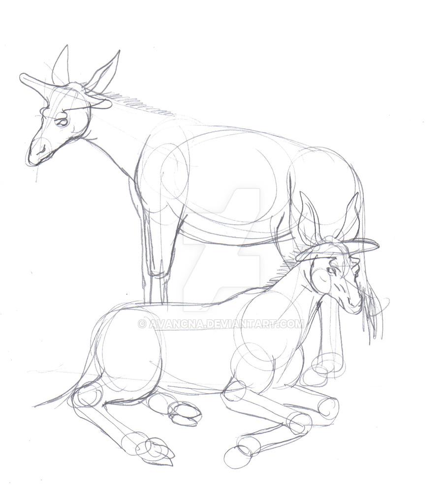 900x1016 Sketch Injanatherium By Avancna