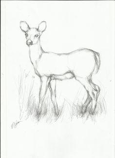 236x324 Swan Sketch, Pen On Paper By Elena Ci On Httpit