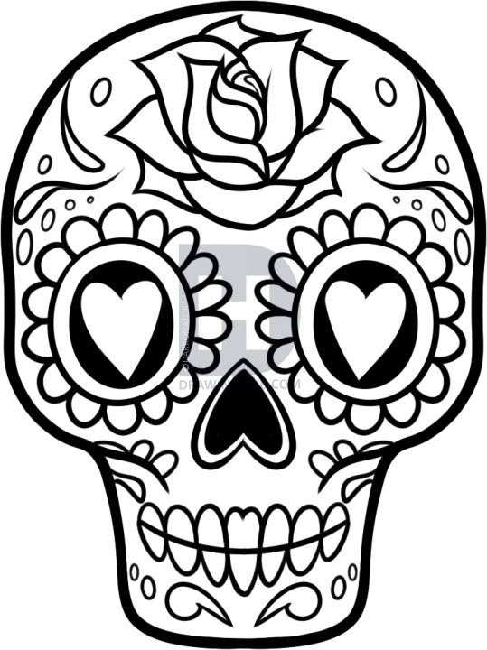 539x720 How To Draw A Sugar Skull Easy, Step By Step, Drawing Guide, By