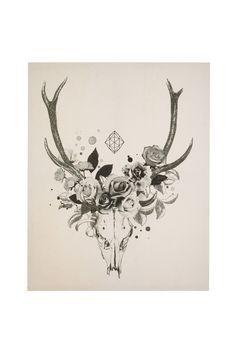 236x354 Deer Skull