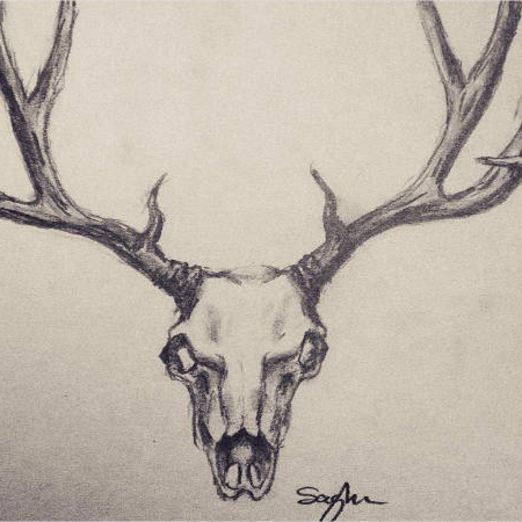 1024x1024 Deer Skull Drawing Earth Clipart