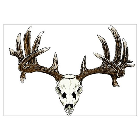 460x460 White Tail Deer Skull Drawing Canvas Art