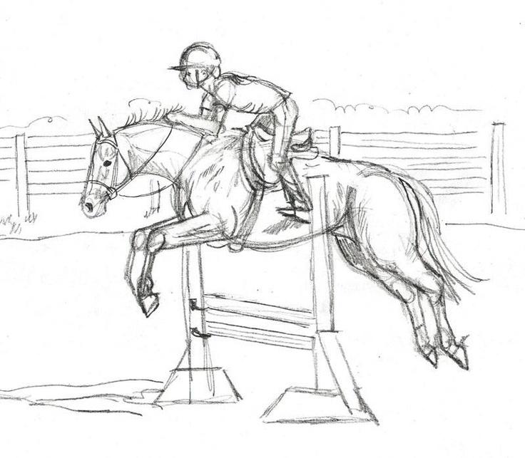 736x643 Best 18 Drawings Ideas On Horse Drawings, Horses