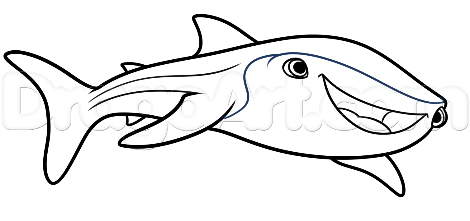 1509x711 How To Draw Destiny From Finding Dory Step 5 Diy