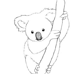 320x294 How To Draw A Koala Paper Drawing, Pencil Eraser And Discovery