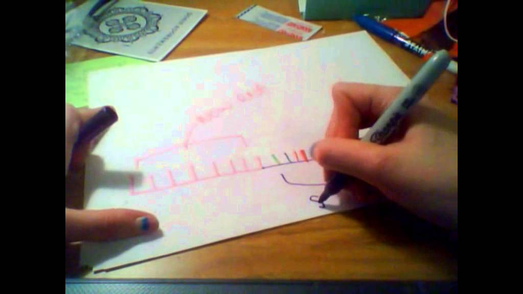 1024x576 Dna Replication A Drawing