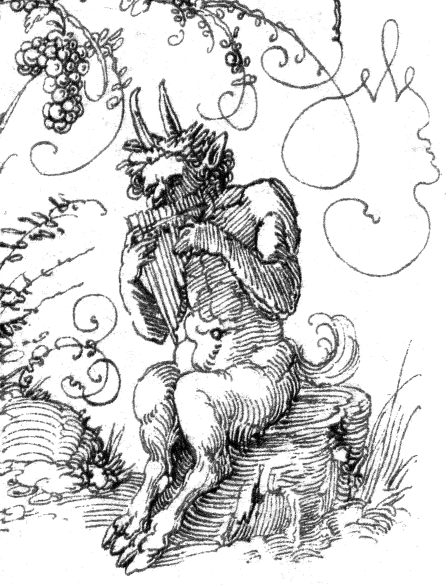 Domain Drawing