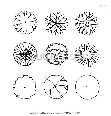 450x470 Landscape Design Drawing Templates Set Of Tree Plan Symbols
