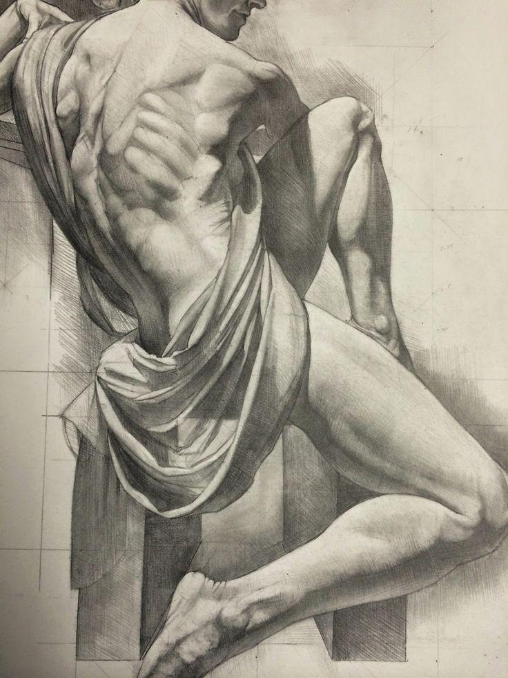 736x981 Anatomy Human Anatomy (Manwoman) Anatomy, Human