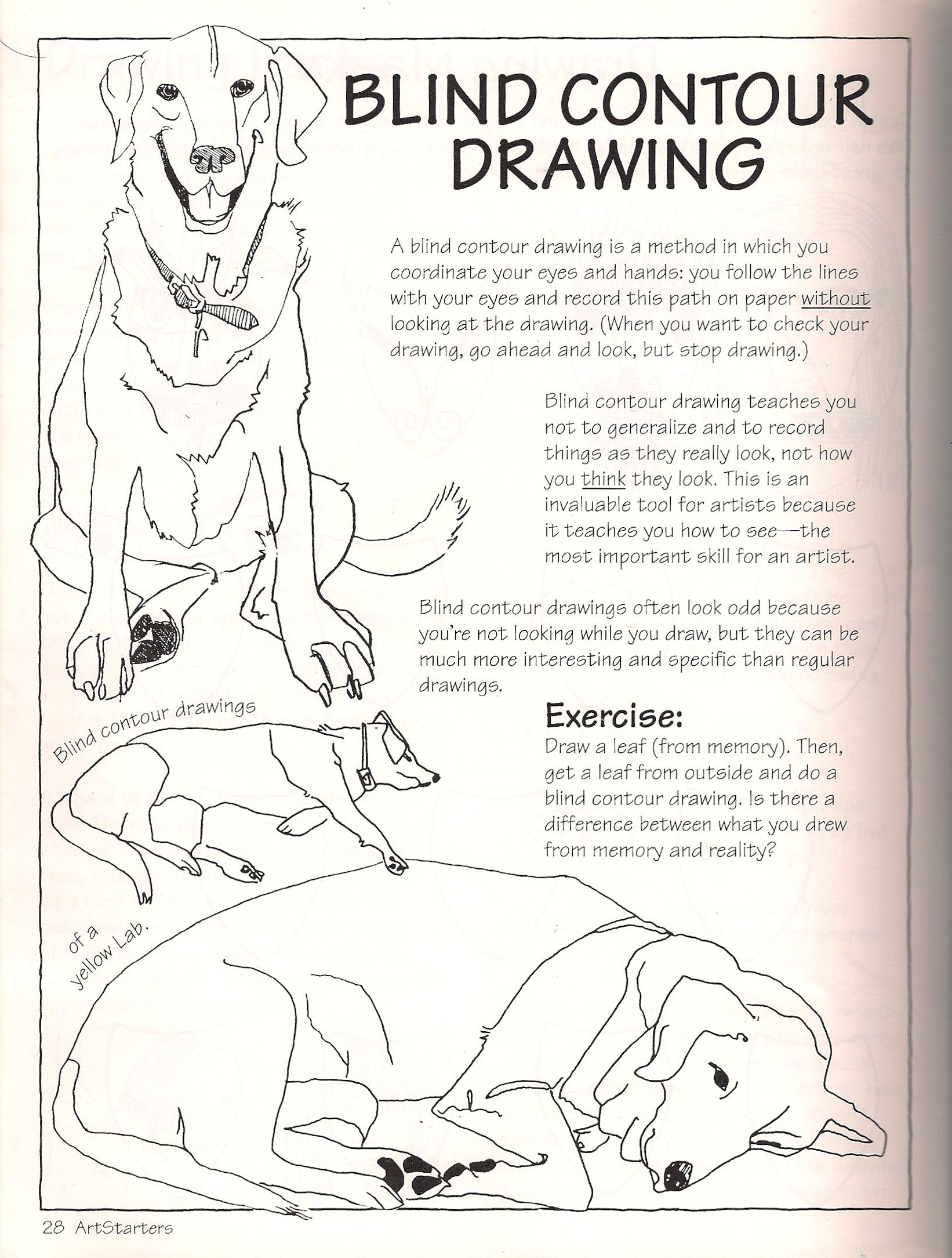 1642x2169 Collection Of Drawing Contour Lines Worksheet High Quality