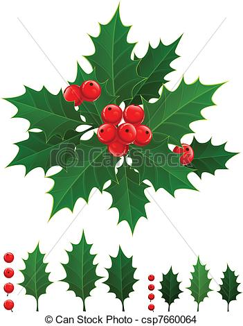 351x470 Holly Berry. Christmas Branch Of Holly Berries And Green Leaves