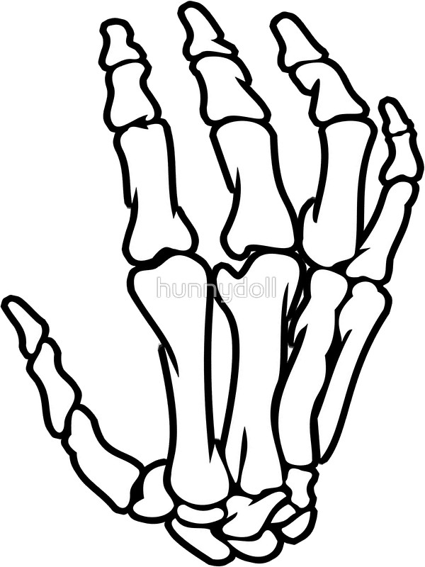 Drawing Of A Skeleton Hand at GetDrawings.com | Free for personal ...