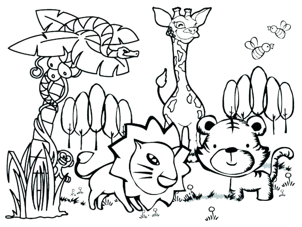 1020x768 Animal Cell Mitosis Color And Label Free Coloring Pages Cytoplasm